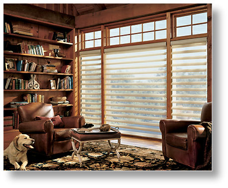 Hunter Douglas Pirouette Blinds Omaha NE