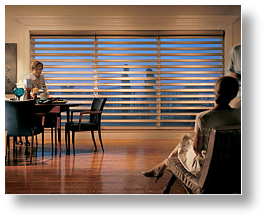 Hunter Douglas Pirouette Window Shades Omaha NE